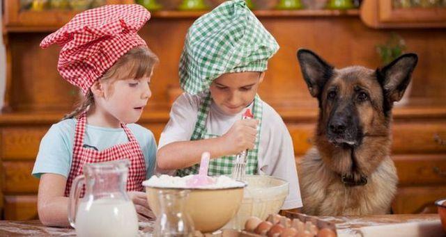 Enfants de cuisine avec un chien dans la cuisine.