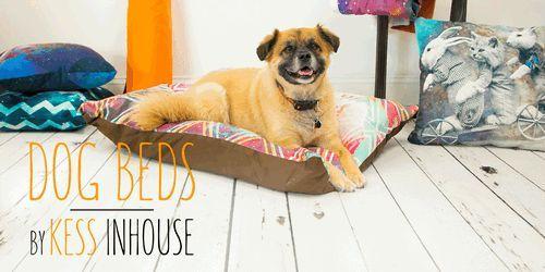 Review: kess lit de chien inhouse