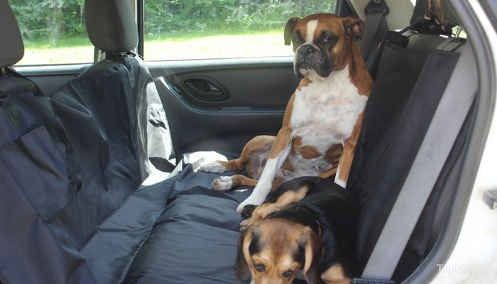 Review: miu hamac animal housse de siège de voiture pour les chiens