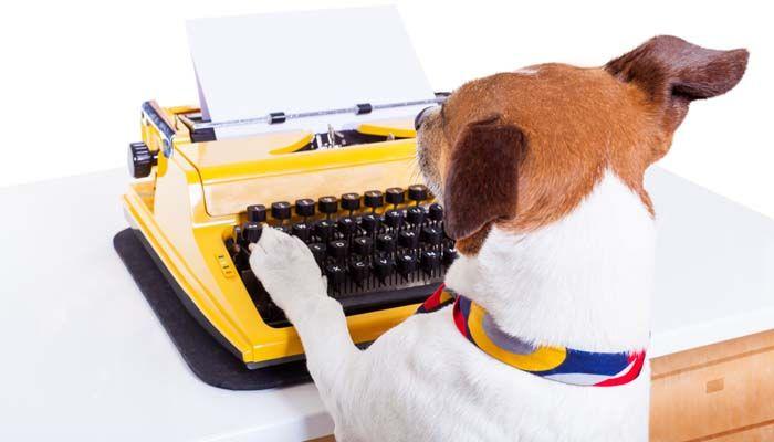 Emmenez votre chien à travailler jour: sensibilisation des chiens de refuge