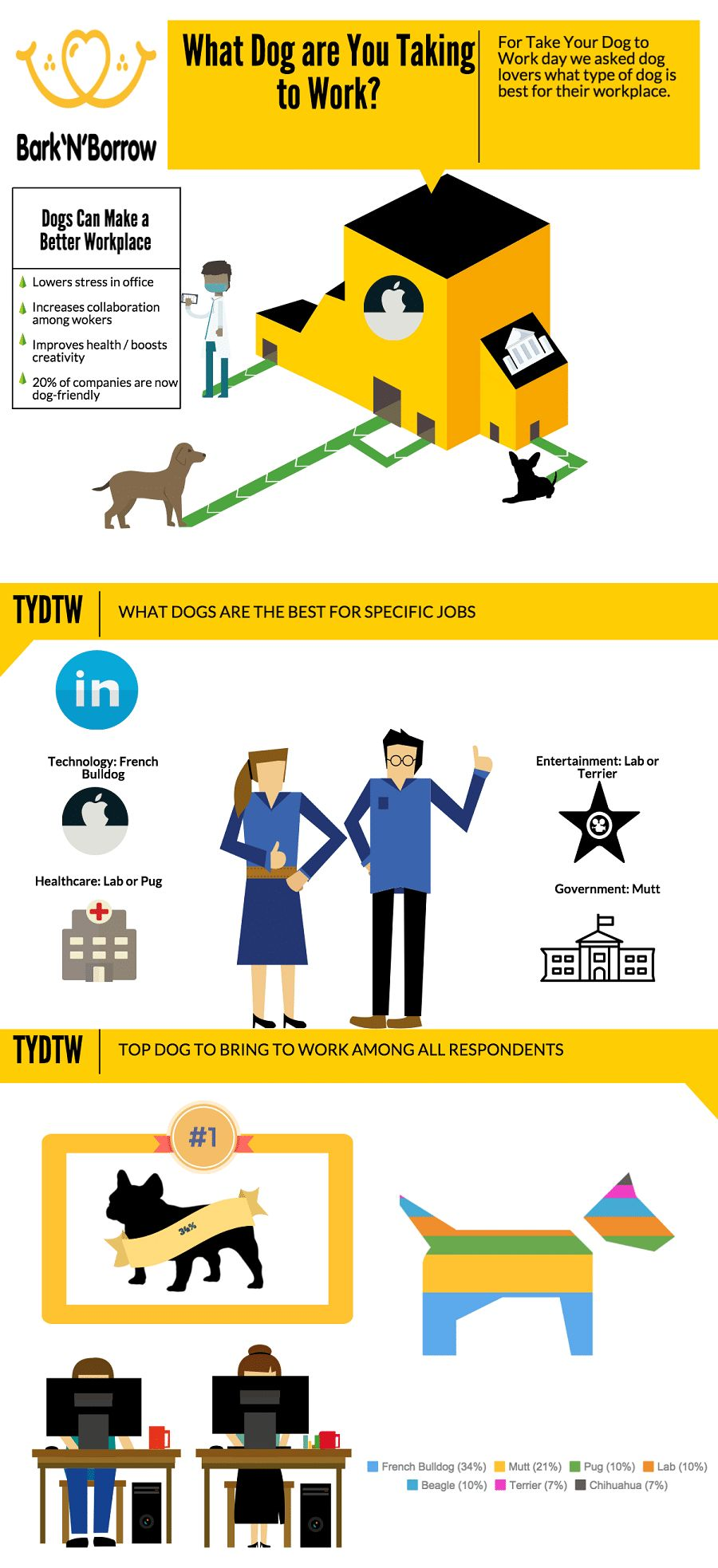 Emmenez votre chien à travailler jour: enseigner buster à se comporter dans le bureau