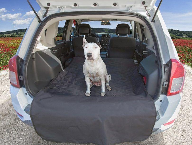 Le meilleur siège de voiture de chien: top 5 des produits pour améliorer la promenade en voiture de fido