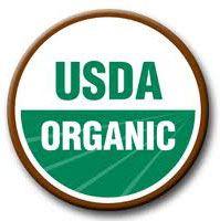 La vérité sur les aliments pour chiens organiques