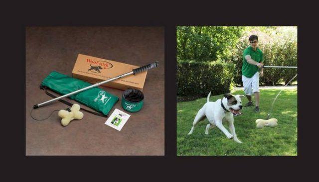 Le woofstick est pas votre jouet pour chien moyen