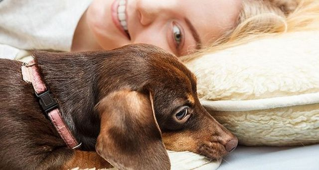 Femme pose avec un chien