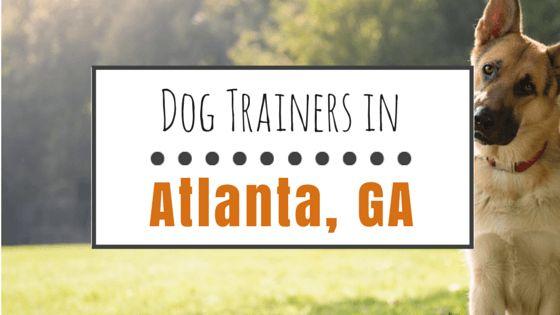 Top 10 des entraîneurs de chien à atlanta, géorgie