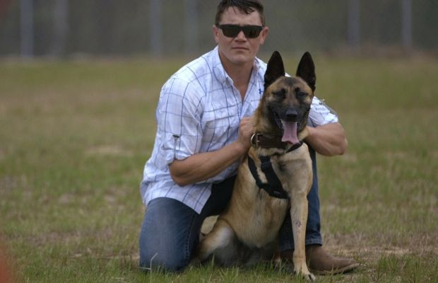 Toucher: chien militaire a tiré 4 fois, sauve la vie des soldats