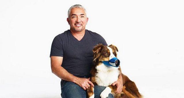 Cesar Millan assis avec un chien portant le Muzzle drôle