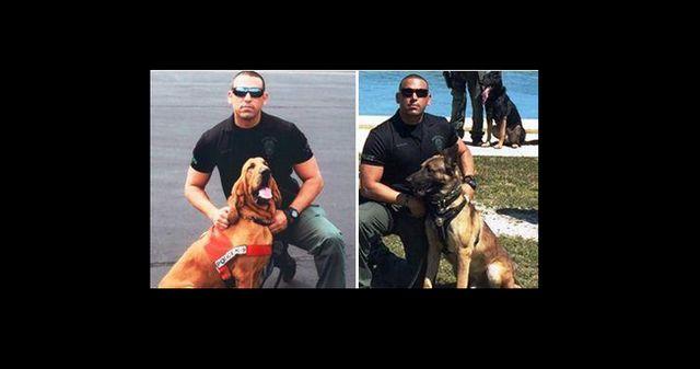 Deux k9s policiers meurent dans la voiture de patrouille chaude de l`agent