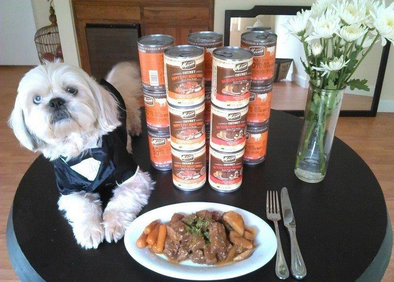 Meilleures marques d`aliments pour chiens