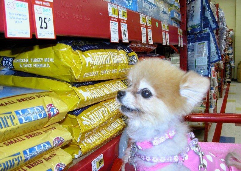 marques d`aliments pour chiens