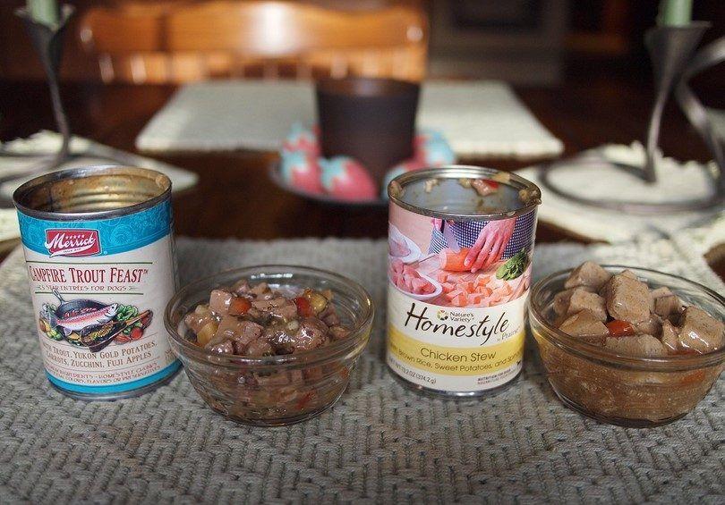 La nourriture humide et en conserve