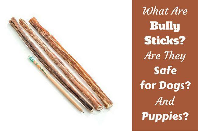 Qu`est-ce qu`un bâton de despote? De quoi sont-ils faits? Sont-ils sûrs?