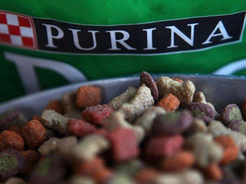 nourriture Purina pour chiens