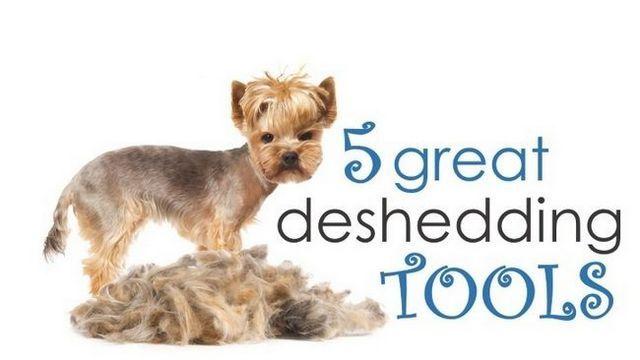 Quel est le meilleur outil deShedding pour les chiens?