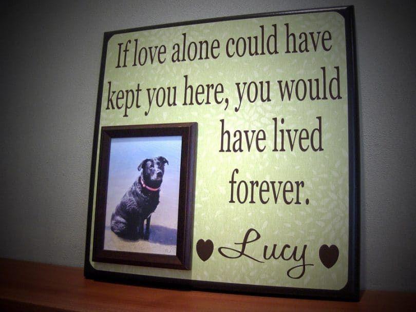 Encadrée chien et un message