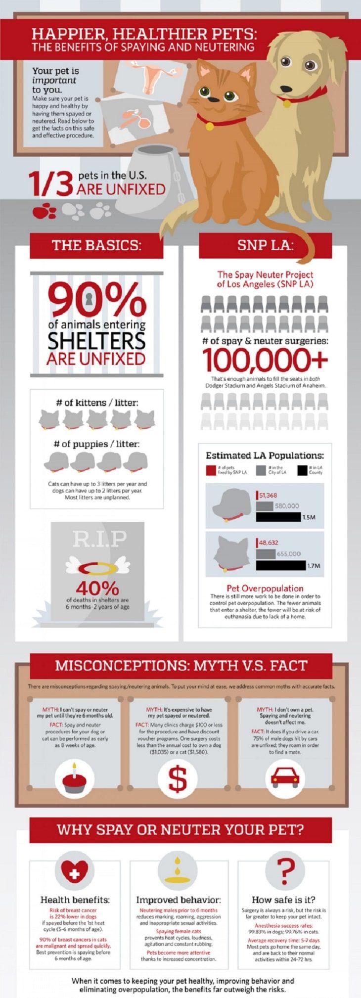 Les avantages de la stérilisation stérilisation
