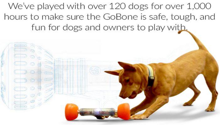 Whoa! Attendez jusqu`à ce que vous voyez ce que ce jouet pour chien peut faire!