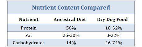 ancestral-alimentation-rapport