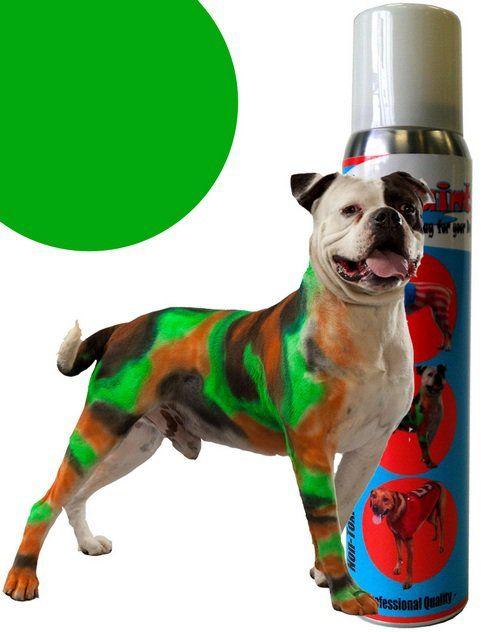 Vous pouvez peindre votre Pooch avec la peinture de chien, mais si vous